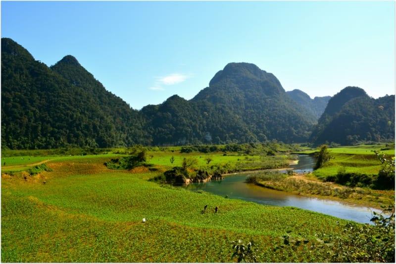 Phong_Nha-Kẻ_Bàng_National_Park