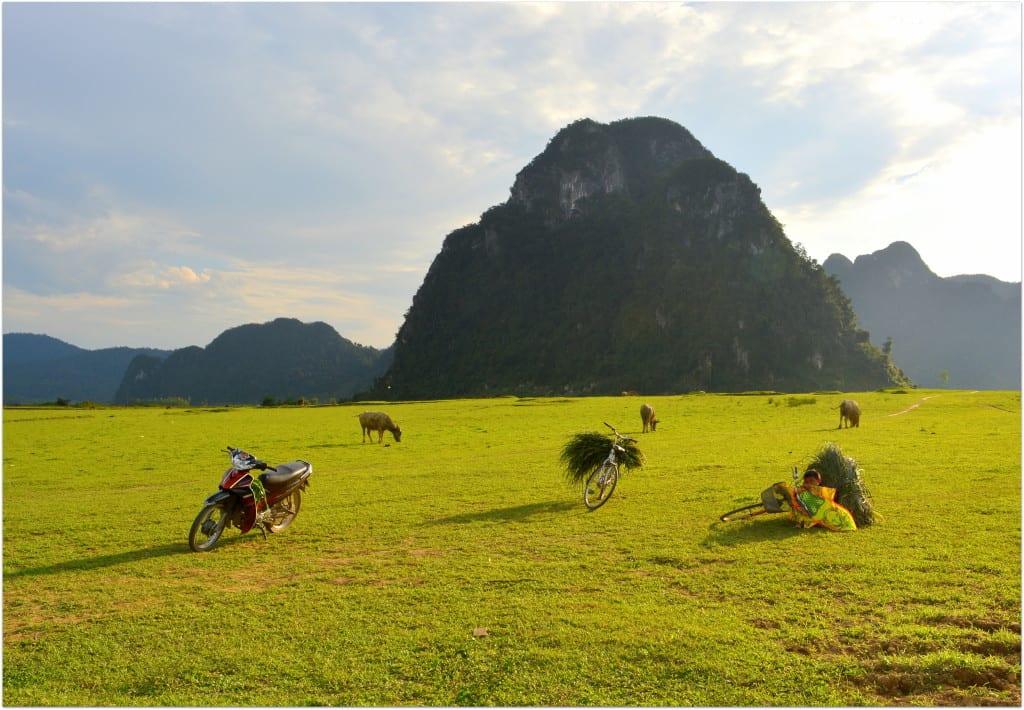Phong_Nha-Kẻ_Bàng_National_Park_scooters