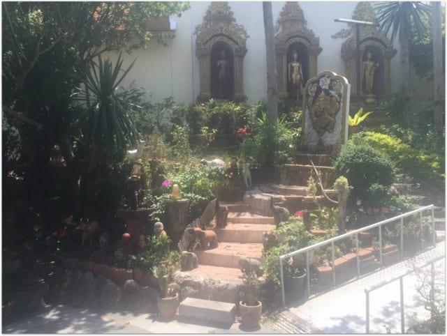flower garden doi suthep chiang mai